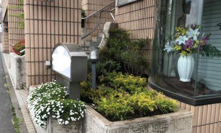 横浜市南区 Mクリニック様 植栽作業
