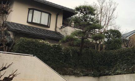 横浜市 泉区 和庭の管理