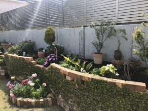 逗子市 仮設花壇の配置および花々植栽
