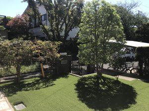 藤沢市 人工芝の庭木剪定