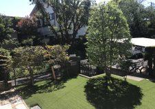 藤沢市 人工芝の庭にて。庭木剪定