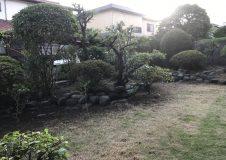 藤沢市 庭手入れ(剪定・芝刈)
