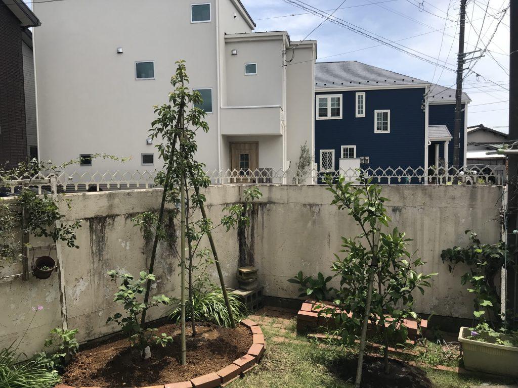 樹木を庭に植える楽しみ