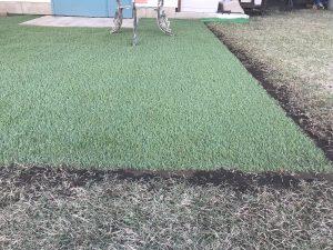 逗子市 天然芝の中に人工芝を張る