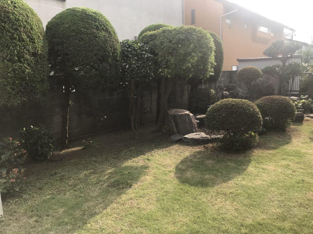 横浜市戸塚区 同業者様から引き継いだ庭木剪定・手入れ・土壌改良