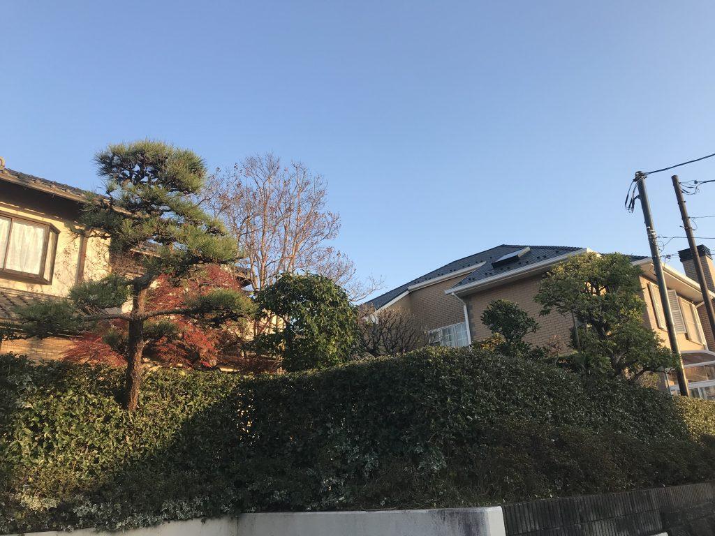 横浜市で最初に潮彩庭縁に剪定依頼をして下さったお客様邸宅の庭手入れ作業
