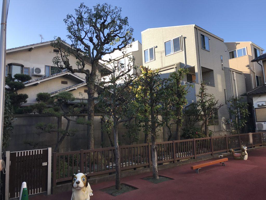 東京都北区 ふくし幼稚園の庭手入れ