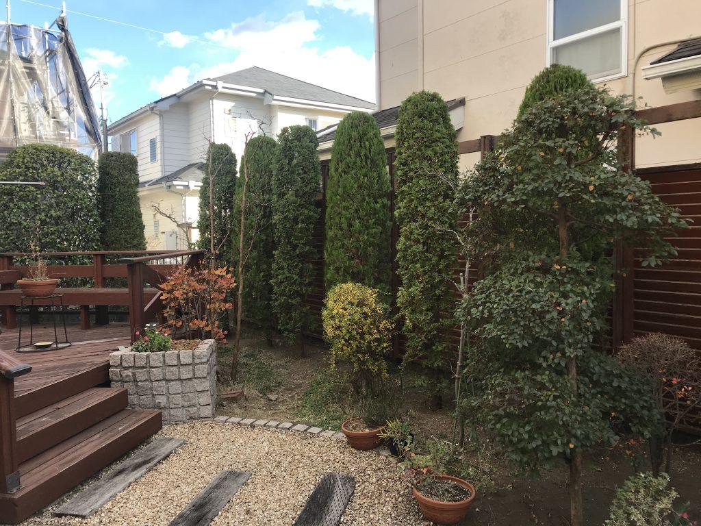 茅ケ崎市にてお手入れ。潮彩庭縁を大きく育ててくれた土地だから最高の手入れで恩返し