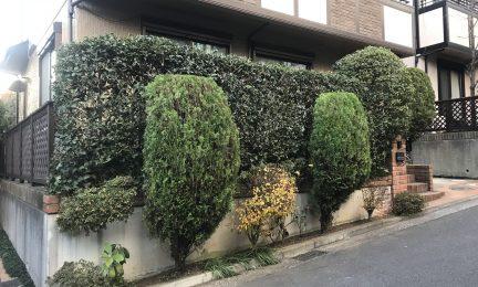横浜市戸塚区 信頼できる植木屋さんを探していました。潮彩庭縁さんは紹介だから安心。