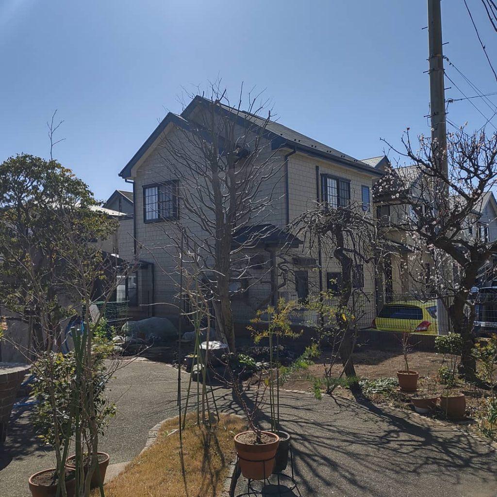 横浜市 戸塚区 庭木が成長したので剪定お願いします。