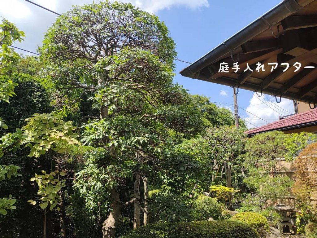横浜市戸塚区 潮彩庭縁さんを紹介してくれた植木屋さんを信頼していますので安心です