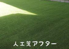 横浜市泉区 夏場に出られなかったお庭を人工芝リフォーム!虫とさよなら!