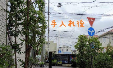 茅ケ崎市 2013年からずっと潮彩庭縁がお手入れさせて頂いています